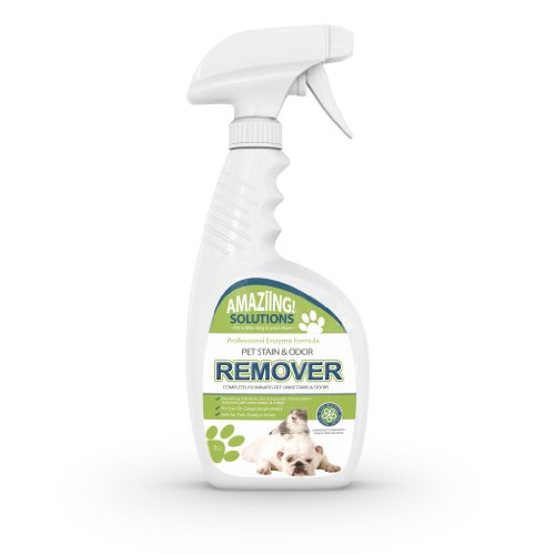 Pet Odor Eliminator and Stain Remover Carpet Cleaner by Amazing solutions