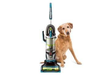 best cordless stick vacuum for pet hair