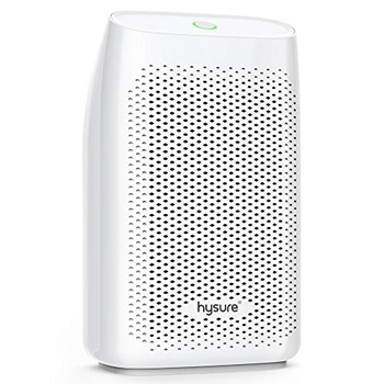 Hysure 2-in-1 Dehumidifier Air Purifier
