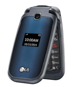 LG 450 Phone Cell Phone Without Internet Capability