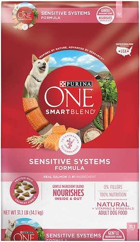 Purina ONE Adult Dry Dog Food